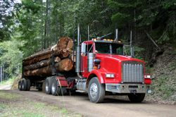 Log Truck Accident/Automobile Accident
